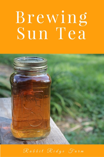 Brewing Sun Tea