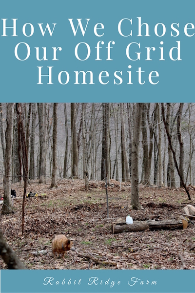 How We Chose Our Off Grid Homesite