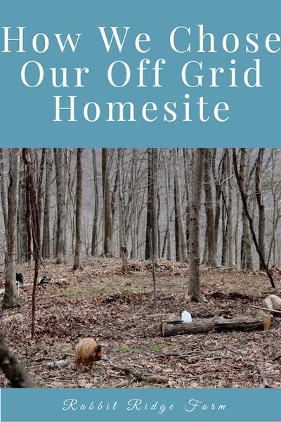 How We Chose Our Off Grid Homesite